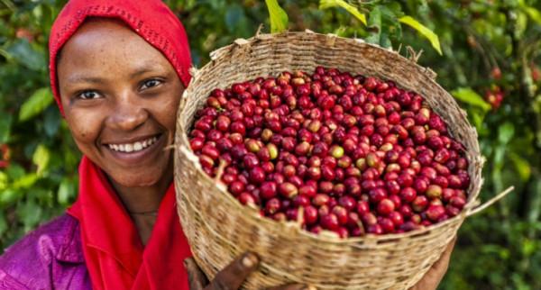 748x400-Blog-ethiopie